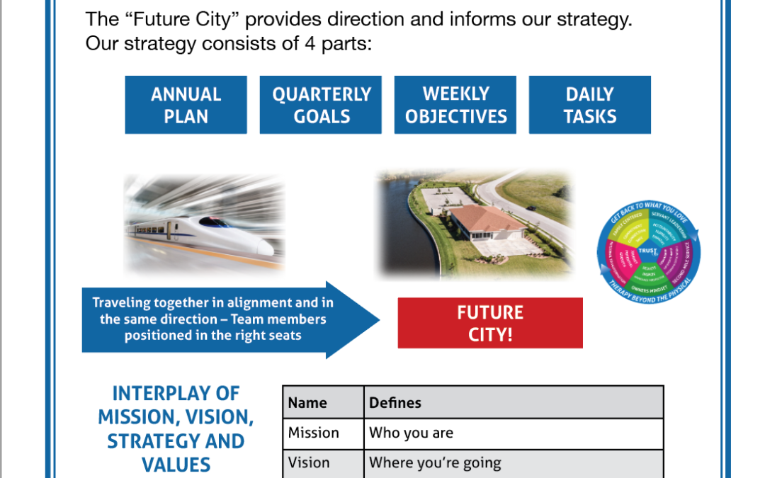 The Interplay of Mission, Vision, Strategy and Values